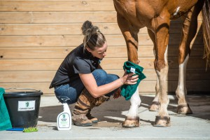 Cowboy Magic Greenspot Remover for tough stains