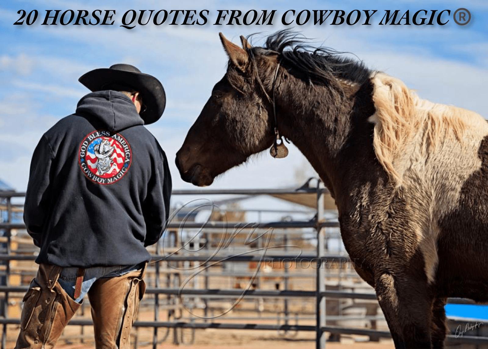 20 Horse Quotes Cowboy Magic