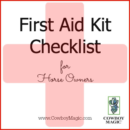 picture regarding First Aid Printable identified as To start with Assist Package Listing for Horse Householders - Printable