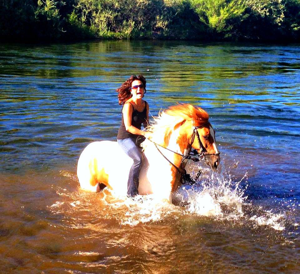 Tips to Keep Your Horse Cool - Cowboy Magic - Cowboy Magic