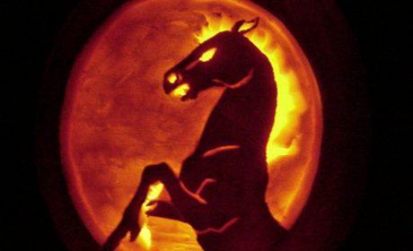 horse pumpkins